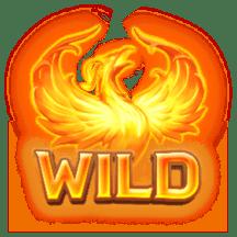 Wild รูปนกไฟ